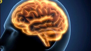 This is What Your Brain Does When You Finish Your To-Do List