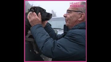 Man reunited with dog after car crash
