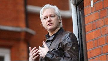 Wikileaks' Julian Assange charged in US, court documents suggest