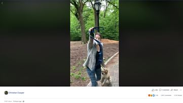 Woman fired after calling police on man who asked her to leash her dog