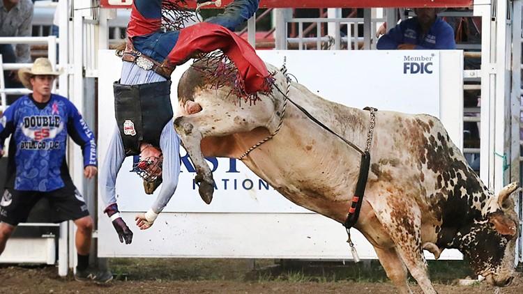Virus Outbreak Bull Riding Live Crowds AP