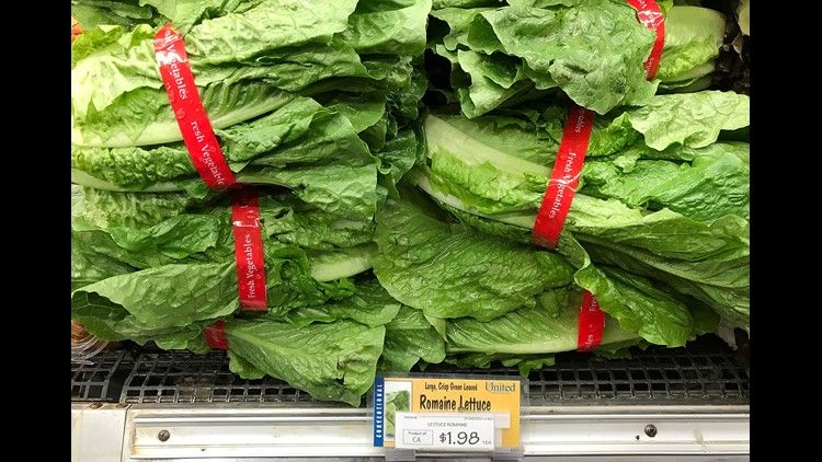 Minnesota illnesses linked to national E. coli outbreak in romaine lettuce