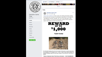 Operation Game Thief offers reward for illegally-dumped catfish