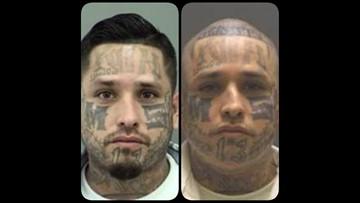 DPS: $7,500 cash reward for information on wanted MS-13 gang member