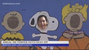 Annual DRI pumpkin patch kicks off this fall season