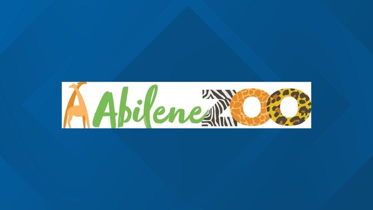 Abilene Zoo animals receive COVID vaccine