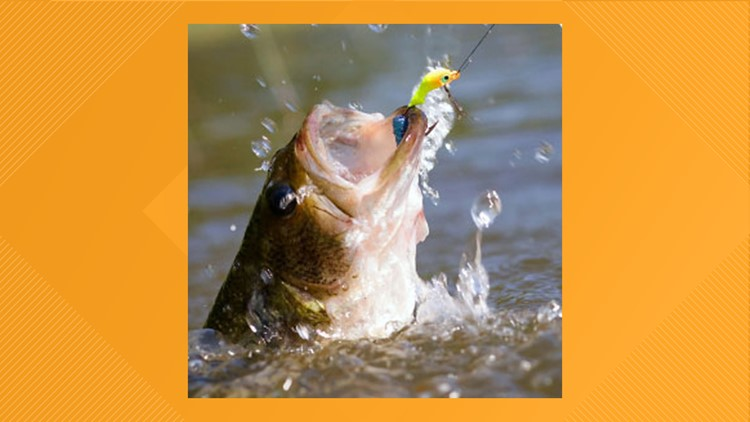 Free Fishing Day provides a great opportunity to support Texas Parks & Wildlife