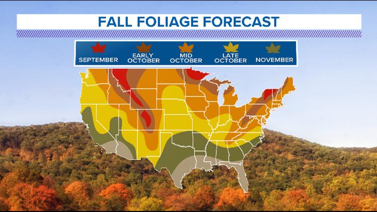 Fall Foliage forecast map