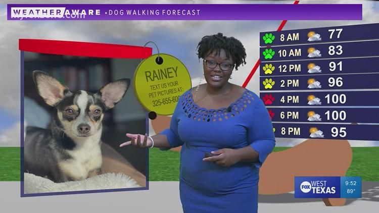 Friday night forecast July 23, 2021