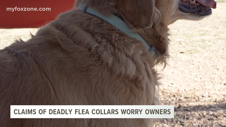 Pet owners concerned after claims of 1,700 pet deaths linked to popular flea collar