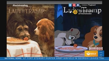 Trending: Lady and the Tramp