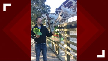 Meet the new director of the Abilene Zoo