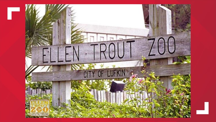 Ellen Trout Zoo in Lufkin saves more than 800 animals during winter storm